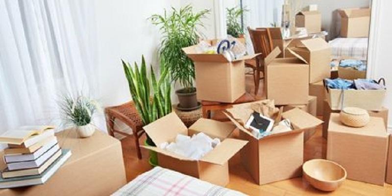 جعبه بقا کمک میکند، تا چیدن کامل وسایل در خانه جدید، همه به وسایل ضروری خود دسترسی آسان داشته باشند