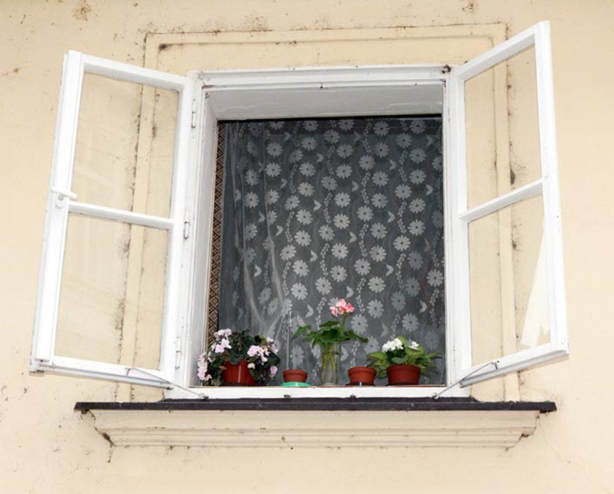 باز کردن پنجره و عوض شدن هوای داخل خانه