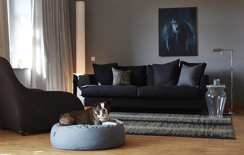پاف مبل برای نشستن حیوانات خانگی