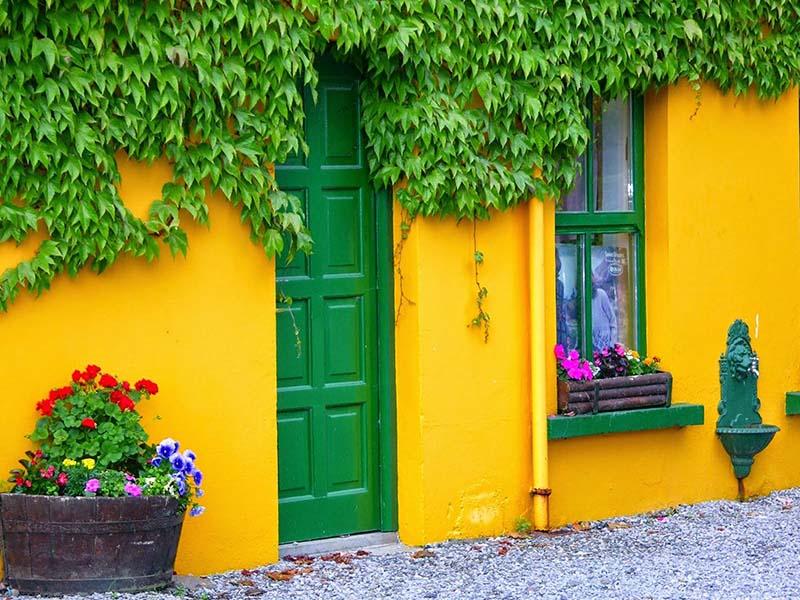 مردم مکزیک علاقه زیادی به رنگهای شاد برای دربهای خود دارند.